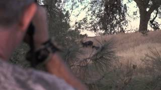 The Ford Outfitters: Fred Eichler Hunts Wild Boar in California