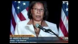Congresswoman: Dems