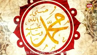 Muhammad Ahmed Qadri - Paigham Saba Layi Hai