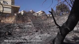 Haifa Fire the Aftermath by Technion Graduate Guy Shachar