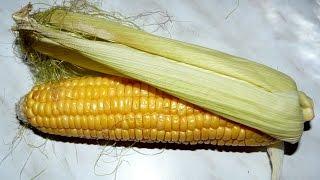 Изяцепт: вареная кукуруза