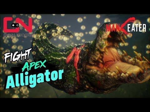 Maneater Apex Alligator VS Bull Shark Boss Fight - Gator Meat Trophy