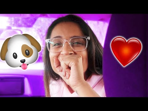 Download Youtube: I GOT A PUPPY!