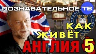 Как живёт Англия  (Познавательное ТВ, Василий Колокольцов)