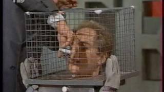 Penn & Teller (Крысы)