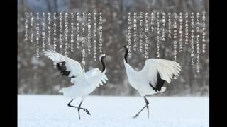 木下順二「夕鶴」より「きっと、帰ってくるのよ」日本の名文を歌おう
