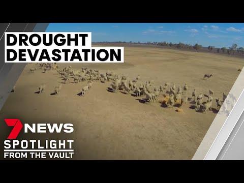 The Last Straw | The Devastation Of Drought On Australia's Farms | Sunday Night