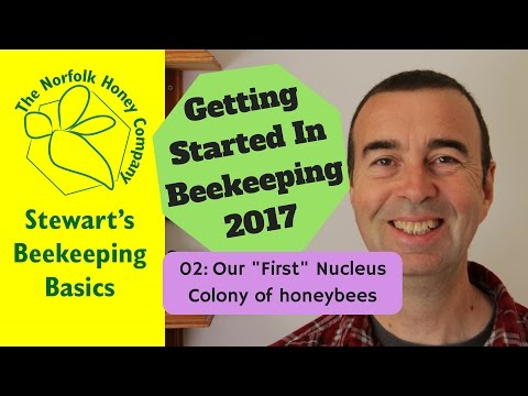 02: Our First Honeybees Colony - Getting Started in Beekeeping 2017 -  The Norfolk Honey Co.