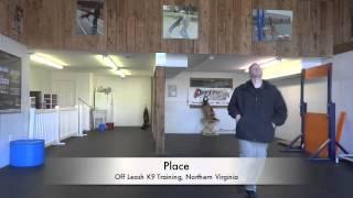 "German Shepherd ""flint:"" Before And After Video! Dog Training, Northern Virginia"