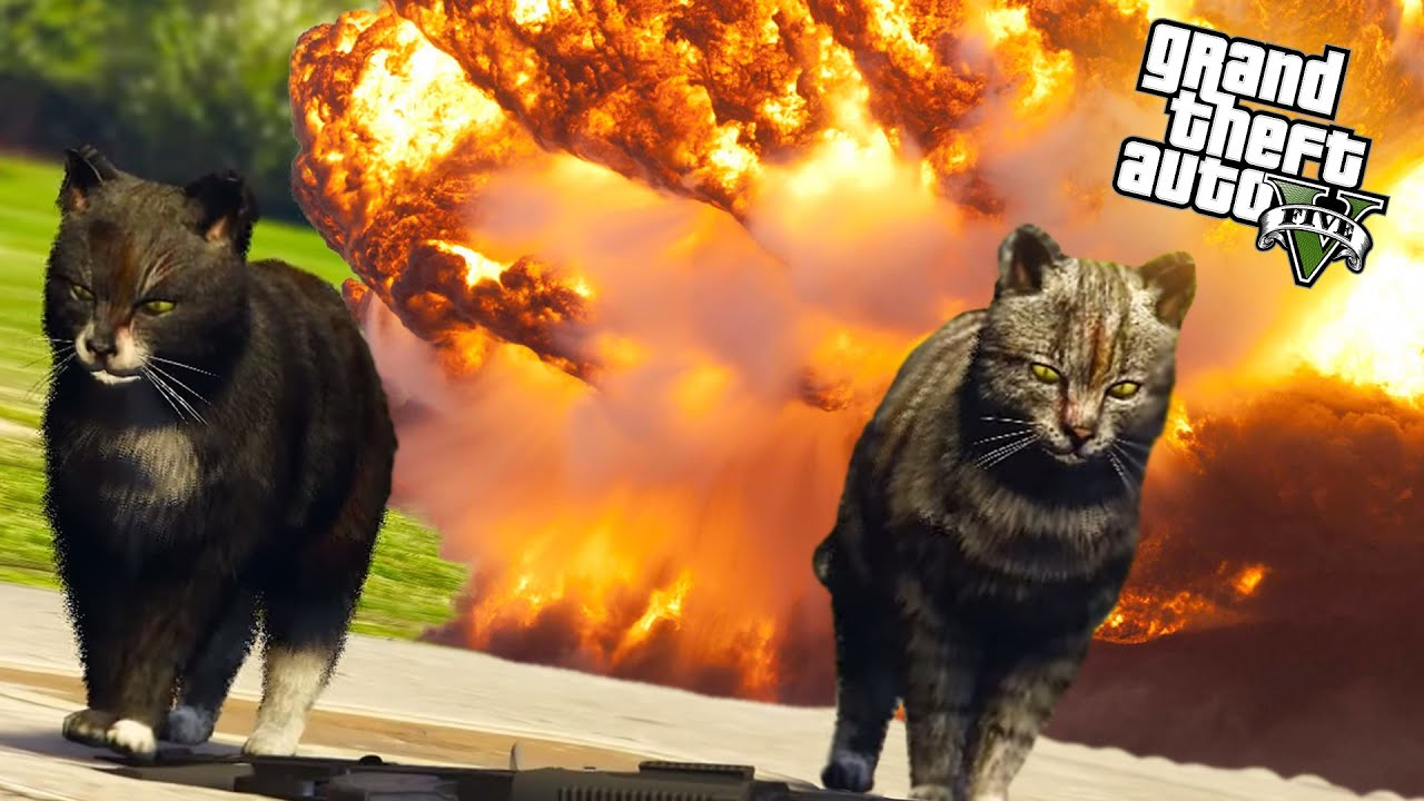 armed cats in gta online gta 5 funny moments with mods