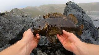 Heavy fog, monster rock fish, unknown depths!  Catch and Cook Cajun Peanut crusted Rockfish fillet