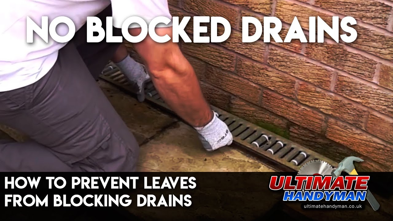 How to prevent leaves from blocking drains