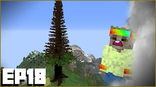Minecraft Let's Play 1.16 | Ep18 :: MEGA TREE BASE