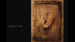 Porcupine Tree - Trains (Ambient version - XMII)