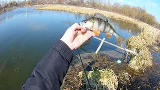 Весенняя рыбалка 19 03 2020г ловля окуня на джиг