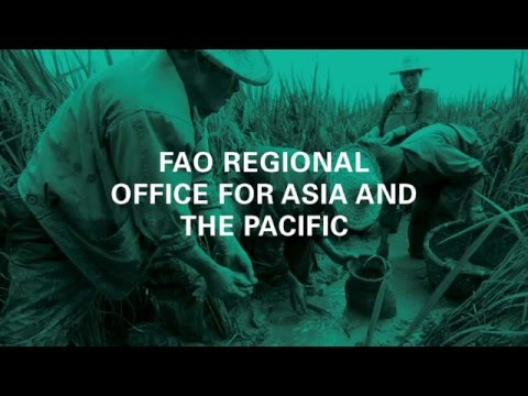 FAO in Asia and the Pacific