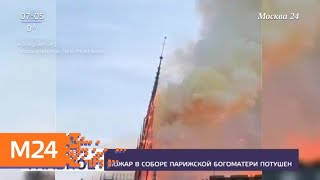 Смотреть видео Главные реликвии собора Парижской Богоматери удалось спасти - Москва 24 онлайн