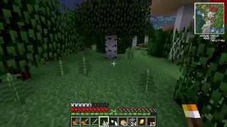 La locura de Alexelcapo en el Dark Forest [Resubido]