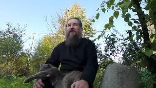 Мог ли патриарх Кирилл отравить патриарха Варфоломея?
