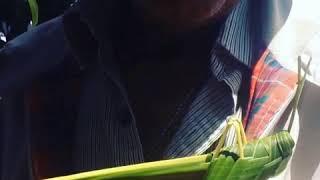 El Chapulín Falso