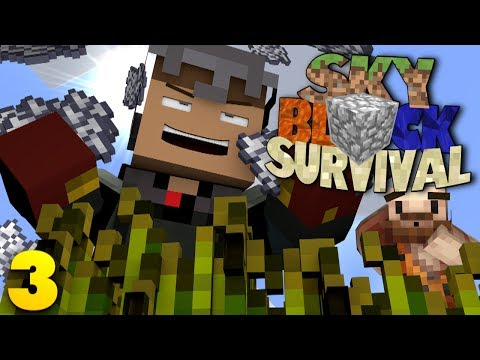 Minecraft Skyblock Server: HACKING THE SYSTEM! w/ Sean (3)