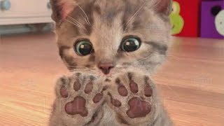 Little Kitten My Favorite Cat - Play Fun Pet Care Game for Kids
