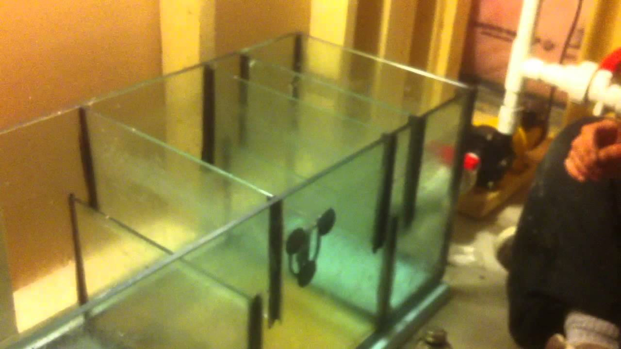 Insane How To DIY salt water coral reef tank upgrade build ...
