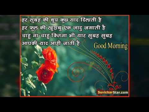 Good Morning Statuswhatsapp Status Hd Hindi Video Download