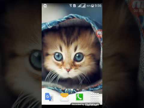 Как установить обои на телефон без приложения