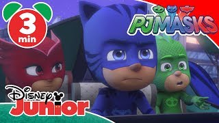 PJ Masks |  Luna Girl's New Pets 🐕 | Disney Junior UK