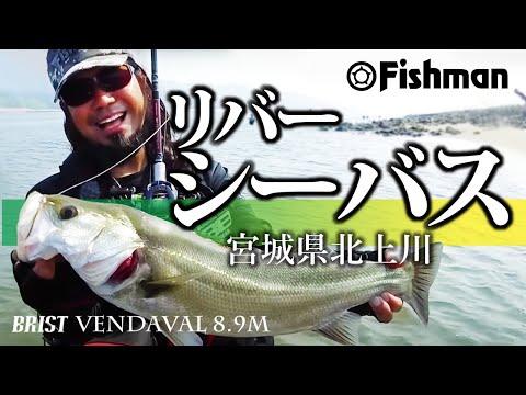 Fishman seabass division2 初夏のリバーシーバスフィッシング宮城県北上川