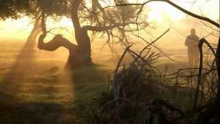 """Park Narodowy """"Ujście Warty"""" - poranek z mgłą"""