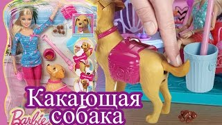 Распаковка, Барби и какающая собака, Лабрадор Тафи