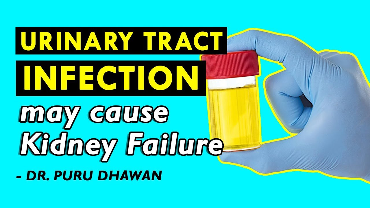 Urinary Tract Infection May Cause Kidney Failure Youtube