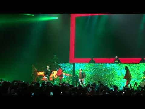 J Balvin - Safari ft. Pharrell Williams & BIA (Live at LA, California)