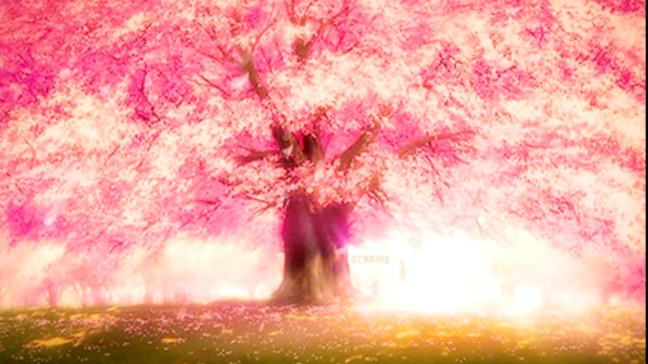 Гифка дерево сакура, картинке про сестру