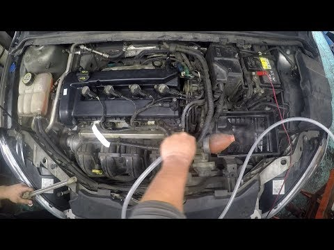 Intake manifold vacuum hose leak & How to Replace PCV hose FORD FOCUS 2.0L 2005~ HE MI4 4F27E