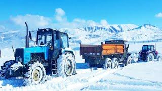 Сравнение Белорусский МТЗ-1221 против Российский ЛТЗ-60 и грузовик Урал | тест драйв 2020