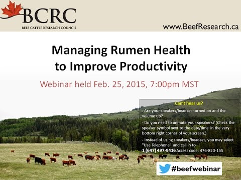 Managing rumen health to improve productivity (BCRC webinar)