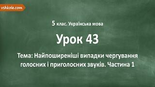 #43 Випадки чергування голосних і приголосних звуків. Частина 1. Відеоурок з української мови 5 клас