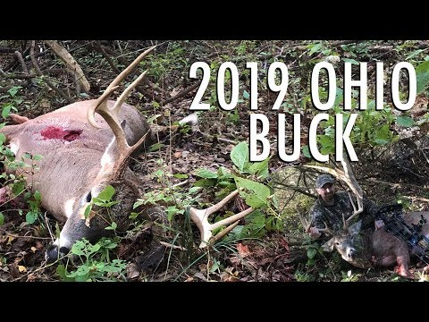 2019 Big Buck DOWN!! Bowhunting Ohio Whitetail Deer In October
