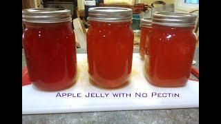 Homemade Apple Jelly Using fresh picked apples