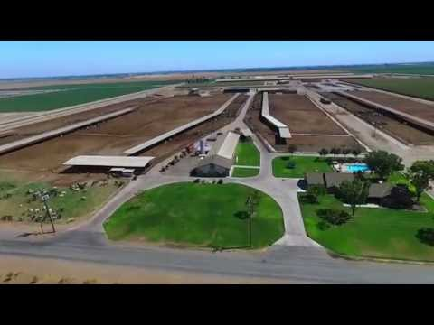 Tulare County Dairy