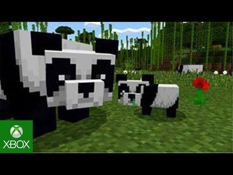 Cats & Pandas