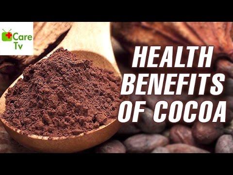 Health Benefits Of Cocoa   Care TV
