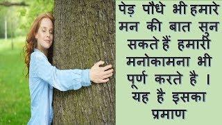 पेड़ पौधे भी हमारे मन की बात सुन सकते हैं हमारी मनोकामना भी पूर्ण करते है । यह है इसका प्रमाण