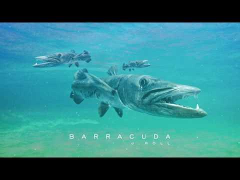 J. Roll - Barracuda
