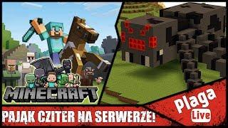 PAJĄK CZITER NA SERWERZE! (Minecraft Sztynx #53) | PlagaLive