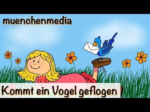 🎵 Kommt ein Vogel geflogen   Kinderlieder deutsch   Frühlingslied - muenchenmedia