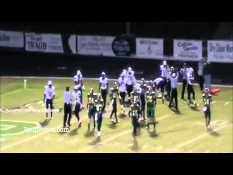 Wayne Gallman Highlights 2013 RB/LB - Gray...